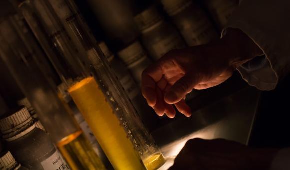 Guy Delforge : Maître Parfumeur