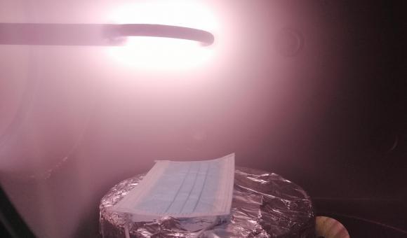 Masque en phase de décontamination par plasma ©Materia Nova